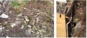 Particolari terreni contaminati da amianto